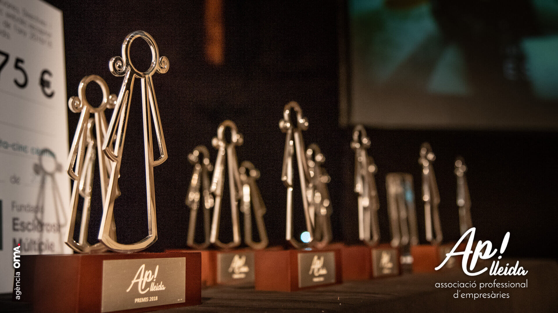 Premis-AP-Lleida-Gala-2018-4648